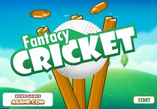 Play Fantacy Cricket