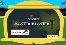 Play Cricket Master Blaster