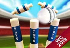 Play Cricket World Cup 2019 MGC